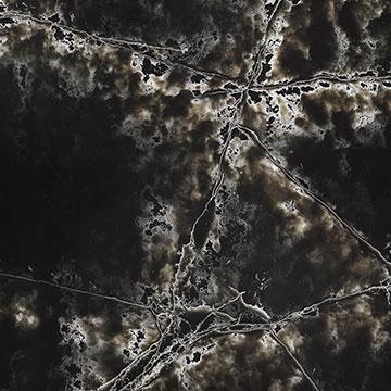 Compac - Black ICE